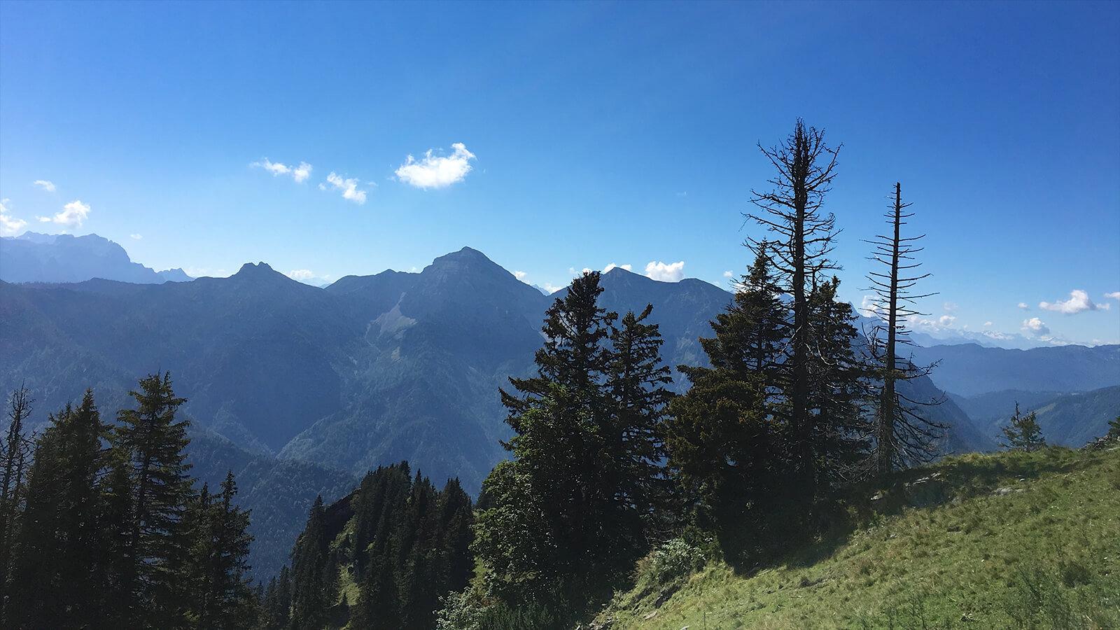 Bergwanderung Rauschberg in Ruhpolding 1.000 Höhenmeter