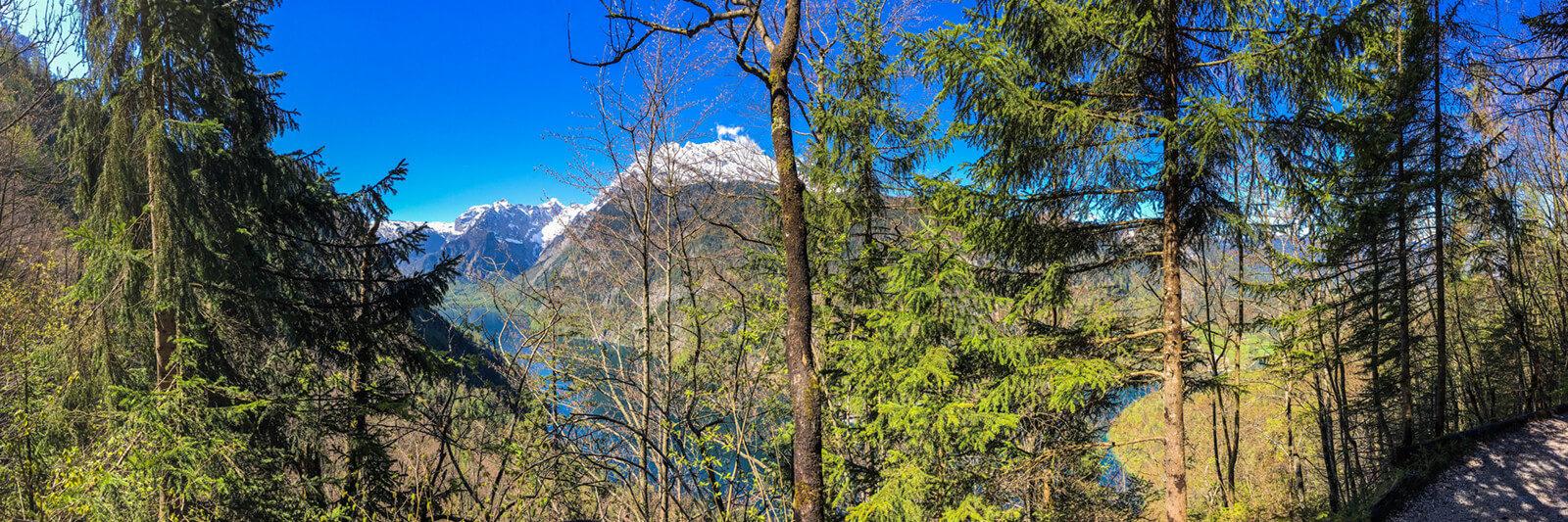 Bergwanderung zum Jenner ab Schönau am Königssee