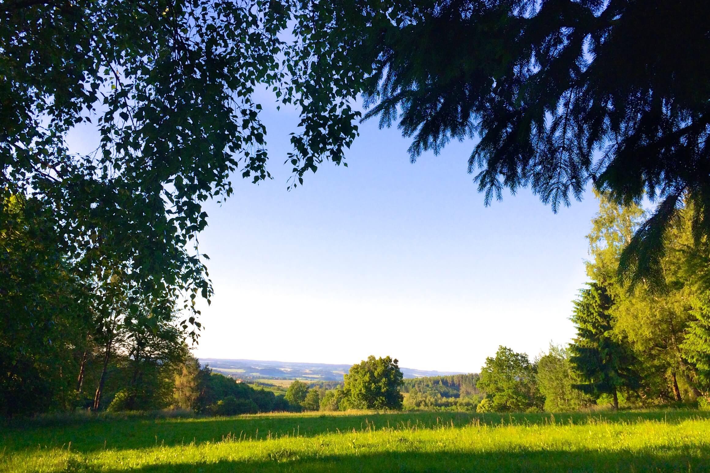 Nordic Walking: es war früh am Morgen
